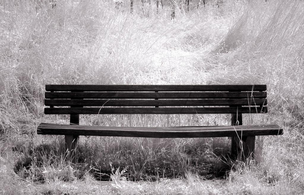 Sitzbank und Wiese als Schwarzweiß-Infrarot-Fotografie