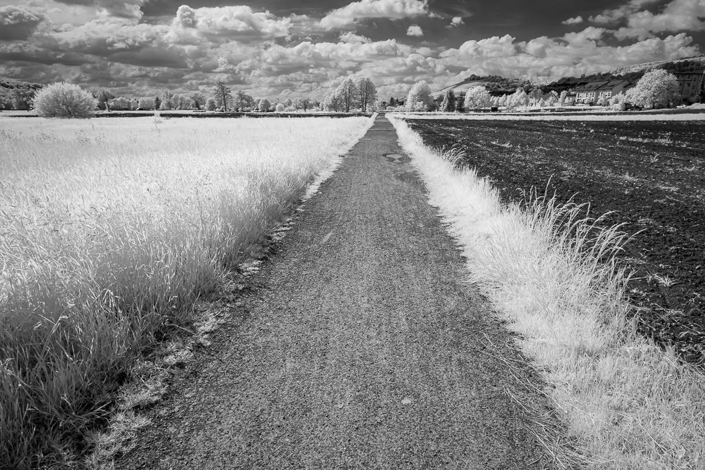 Feldweg in Infrarot