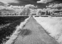 Feldweg mit Pfütze Schwarzweiß-Infrarot