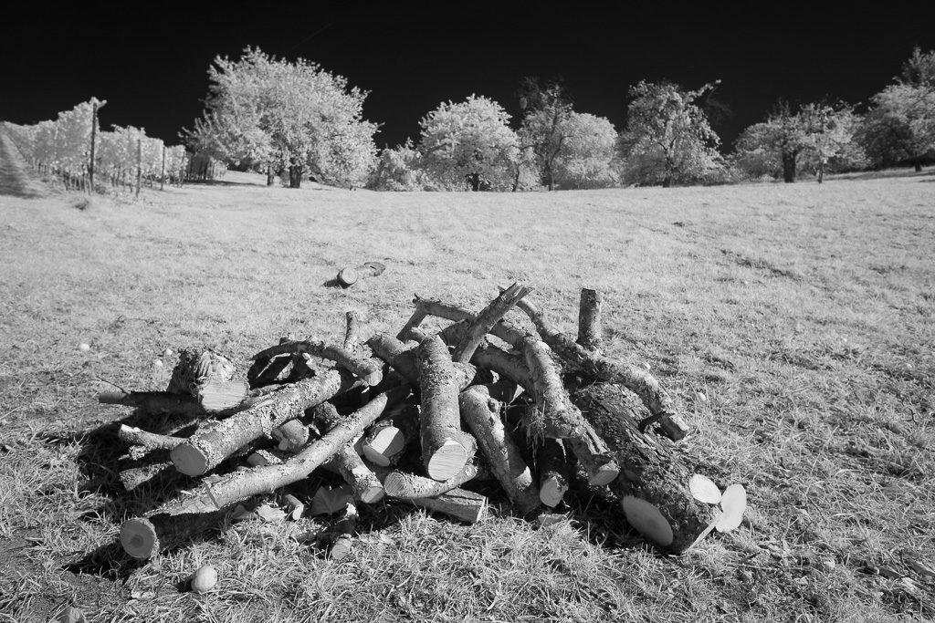 Holzhaufen auf einer Wiese als Schwarzweiß-Infrarot-Foto