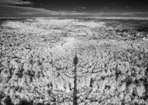 Wood Effekt Infrarot Fotografie
